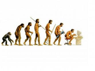 Evolution-13